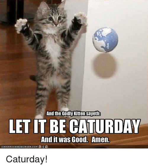 and the godly kitten sayeth let it be caturday and 8075131 search margaret memes on sizzle,