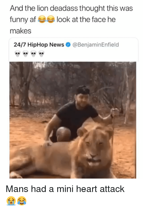 Mini Heart Attack: And the lion deadass thought this was  funny af look at the face he  makes  24/7 HipHop News  @BenjaminEnfield Mans had a mini heart attack 😭😂