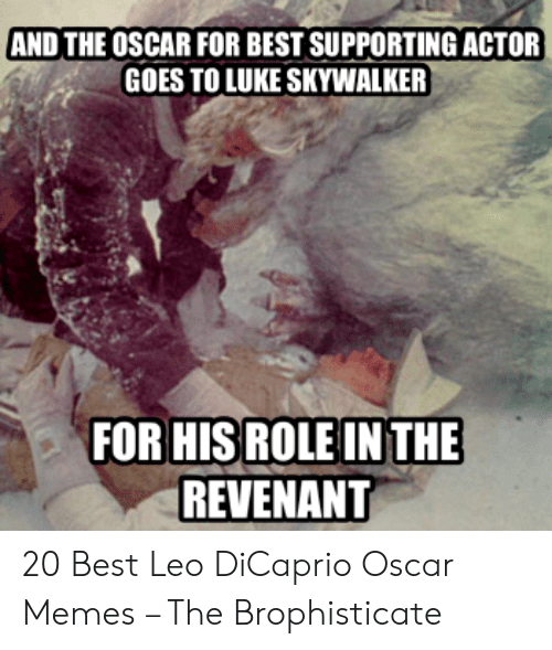 Leo Dicaprio Oscar: AND THE OSCAR FOR BEST SUPPORTING ACTOR  GOES TO LUKE SKYWALKER  FOR HISROLE IN THE  REVENANT 20 Best Leo DiCaprio Oscar Memes – The Brophisticate