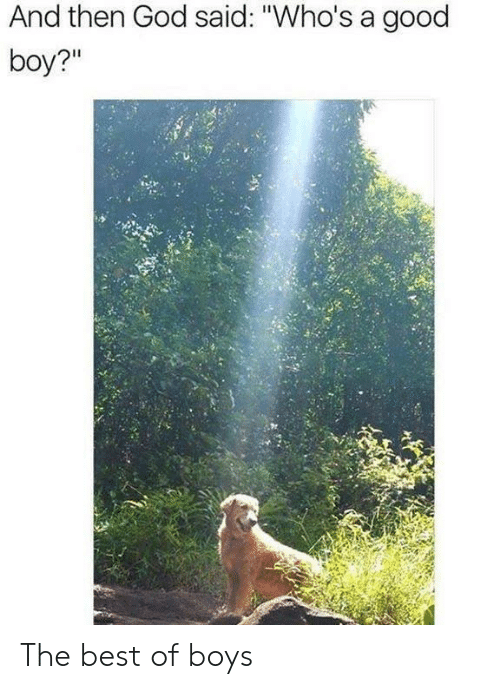 """Whos A Good Boy: And then God said: """"Who's a good  boy?"""" The best of boys"""