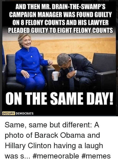 obama-and-hillary: AND THEN MR. DRAIN-THE-SWAMP'S  CAMPAIGN MANAGER WAS FOUND GUILTY  ON 8 FELONY COUNTS AND HIS LAWYER  PLEADED GUILTY TO EIGHT FELONY COUNTS  ON THE SAME DAY!  OCCUPY DEMOCRATS Same, same but different: A photo of Barack Obama and Hillary Clinton having a laugh was s... #memeorable #memes