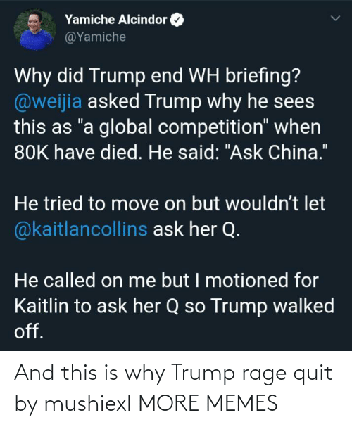 quit: And this is why Trump rage quit by mushiexl MORE MEMES