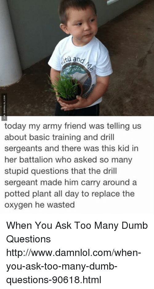 stupid questions: and  today my army friend was telling us  about basic training and drill  sergeants and there was this kid in  her battalion who asked so many  stupid questions that the drill  sergeant made him carry around a  potted plant all day to replace the  oxygen he wasted When You Ask Too Many Dumb Questions http://www.damnlol.com/when-you-ask-too-many-dumb-questions-90618.html