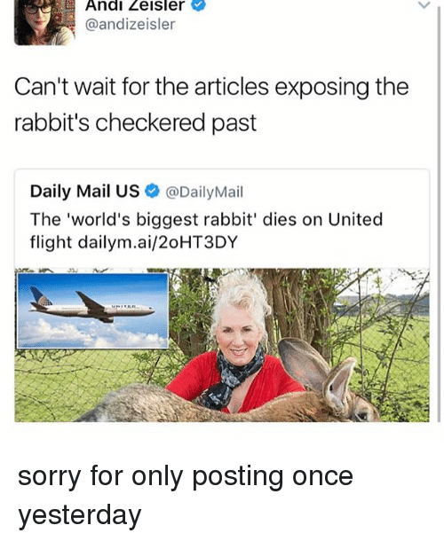 andie: Andi Zeisler  @andizeisler  Can't wait for thearticles exposing the  rabbit's checkered past  Daily Mail US  @DailyMail  The 'world's biggest rabbit' dies on United  flight dailym.ai/20HT3DY sorry for only posting once yesterday