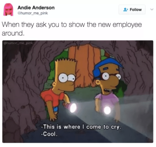 andie: Andie Anderson  Follow  @humor_me_pink  When they ask you to show the new employee  around.  Ohumor_me_pink  -This is where I come to cry.  -Cool.