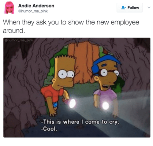 andie: Andie Anderson  Follow  @humor_me_pink  When they ask you to show the new employee  around  @humor_me_pink  -This is where I come to cry.  Cool.