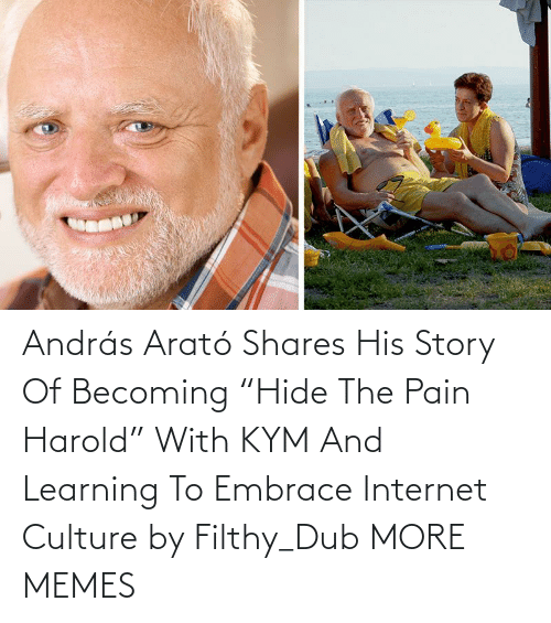"Internet: András Arató Shares His Story Of Becoming ""Hide The Pain Harold"" With KYM And Learning To Embrace Internet Culture by Filthy_Dub MORE MEMES"