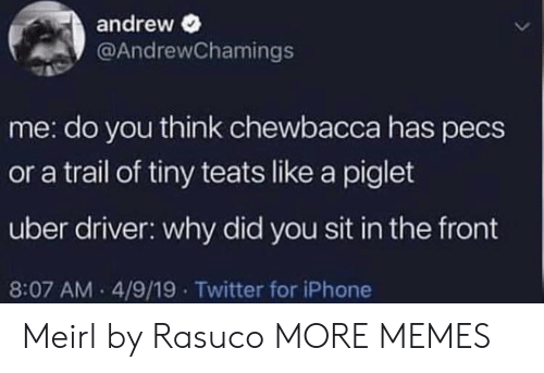 piglet: andrew  @AndrewChamings  me: do you think chewbacca has pecs  or a trail of tiny teats like a piglet  uber driver: why did you sit in the front  8:07 AM 4/9/19 Twitter for iPhone Meirl by Rasuco MORE MEMES