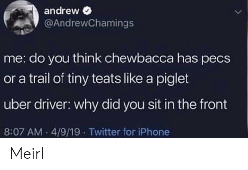 piglet: andrew  @AndrewChamings  me: do you think chewbacca has pecs  or a trail of tiny teats like a piglet  uber driver: why did you sit in the front  8:07 AM 4/9/19 Twitter for iPhone Meirl