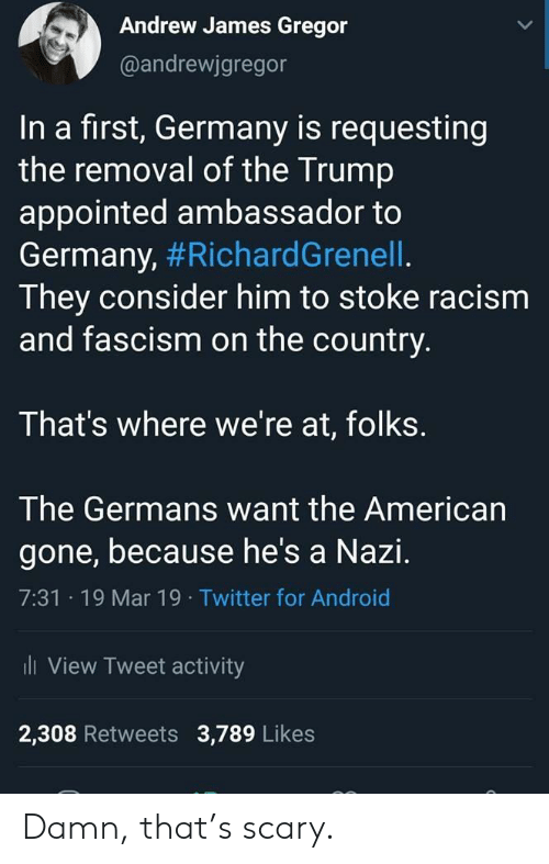 stoke: Andrew James Gregor  @andrewjgregor  In a first, Germany is requesting  the removal of the Trump  appointed ambassador to  Germany, #RichardGrenell  They consider him to stoke racism  and fascism on the country.  That's where we're at, folks.  The Germans want the American  gone, because he's a Nazi.  7:31 19 Mar 19 Twitter for Android  li View Tweet activity  2,308 Retweets 3,789 Likes Damn, that's scary.