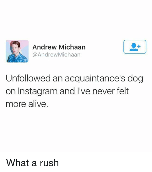 Alive, Instagram, and Rush: Andrew Michaarn  @AndrewMichaan  Unfollowed an acquaintance's dog  on Instagram and I've never felt  more alive What a rush