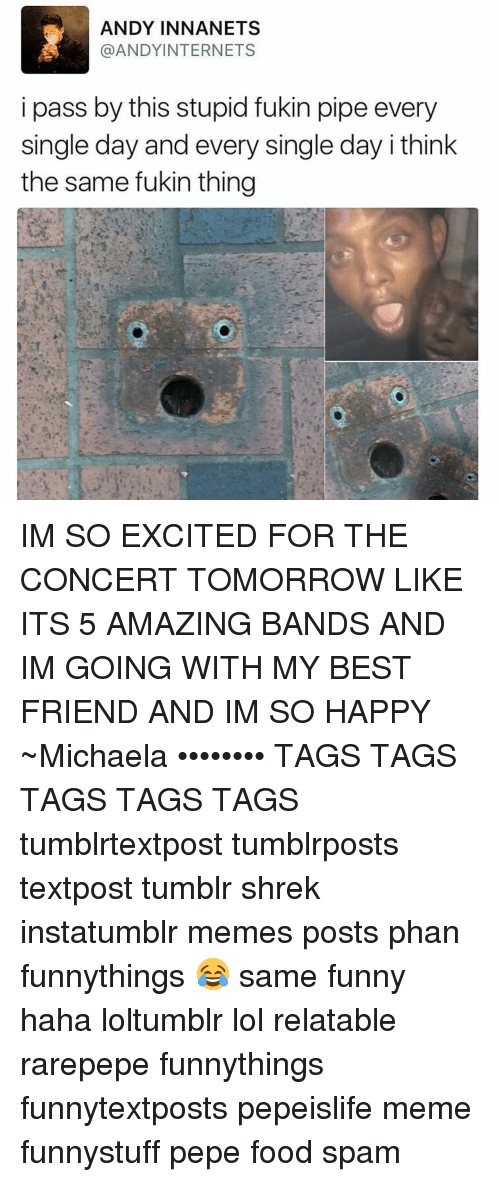 singles day: ANDY IN NAN ETS  @ANDY INTERNETS  i pass by this stupid fukin pipe every  single day and every single day i think  the same fukin thing IM SO EXCITED FOR THE CONCERT TOMORROW LIKE ITS 5 AMAZING BANDS AND IM GOING WITH MY BEST FRIEND AND IM SO HAPPY ~Michaela •••••••• TAGS TAGS TAGS TAGS TAGS tumblrtextpost tumblrposts textpost tumblr shrek instatumblr memes posts phan funnythings 😂 same funny haha loltumblr lol relatable rarepepe funnythings funnytextposts pepeislife meme funnystuff pepe food spam