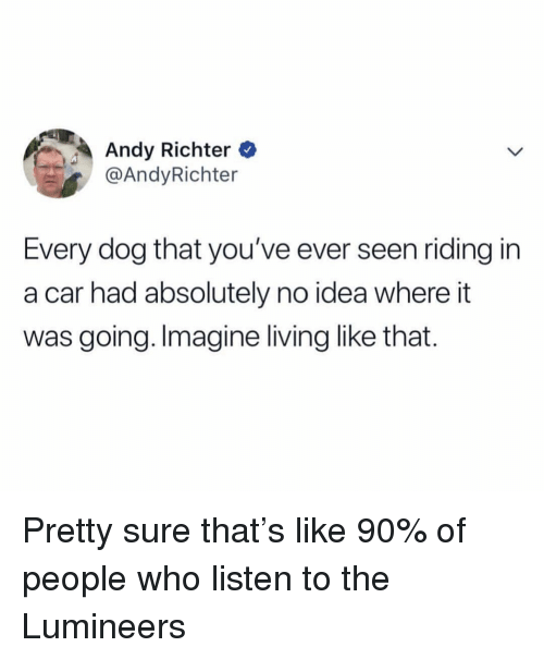 Dank Memes, Living, and Andy Richter: Andy Richter  @AndyRichter  Every dog that you've ever seen riding in  a car had absolutely no idea where it  was going. Imagine living like that. Pretty sure that's like 90% of people who listen to the Lumineers