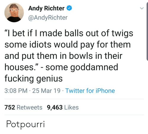 "goddamned: Andy Richter  @AndyRichter  ""I bet if I made balls out of twigs  some idiots would pay for them  and put them in bowls in their  houses."" - some goddamned  fucking genius  3:08 PM 25 Mar 19 Twitter for iPhone  752 Retweets 9,463 Likes Potpourri"