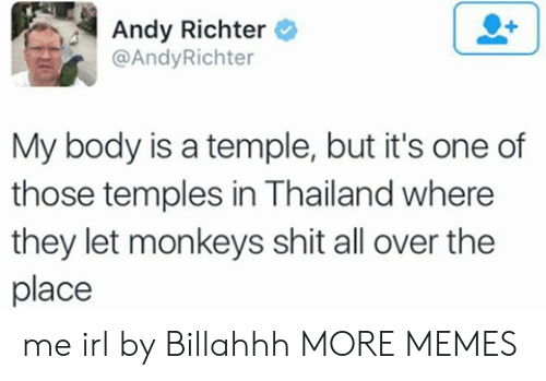 Thailand: Andy Richter  @AndyRichter  My body is a temple, but it's one of  those temples in Thailand where  they let monkeys shit all over the  place me irl by Billahhh MORE MEMES