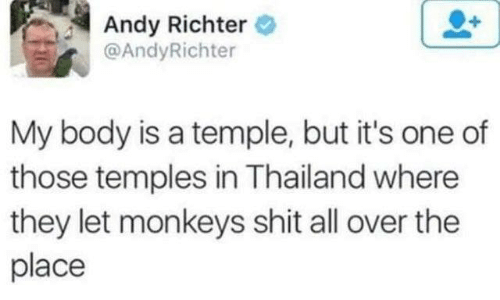 monkeys: Andy Richter  @AndyRichter  My body is a temple, but it's one of  those temples in Thailand where  they let monkeys shit all over the  place