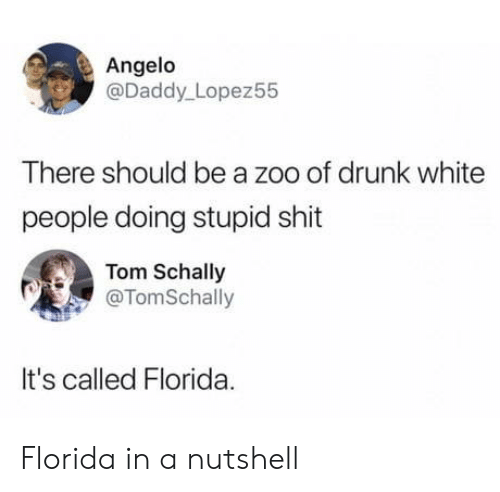 angelo: Angelo  @Daddy_ Lopez55  There should be a zoo of drunk white  people doing stupid shit  Tom Schally  @TomSchally  It's called Florida. Florida in a nutshell
