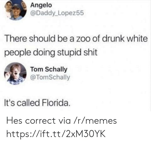 angelo: Angelo  @Daddy Lopez55  There should be a zoo of drunk white  people doing stupid shit  Tom Schally  @TomSchally  It's called Florida Hes correct via /r/memes https://ift.tt/2xM30YK