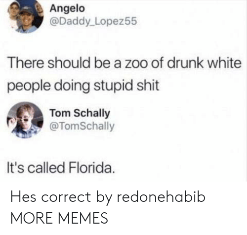 angelo: Angelo  @Daddy Lopez55  There should be a zoo of drunk white  people doing stupid shit  Tom Schally  @TomSchally  It's called Florida Hes correct by redonehabib MORE MEMES