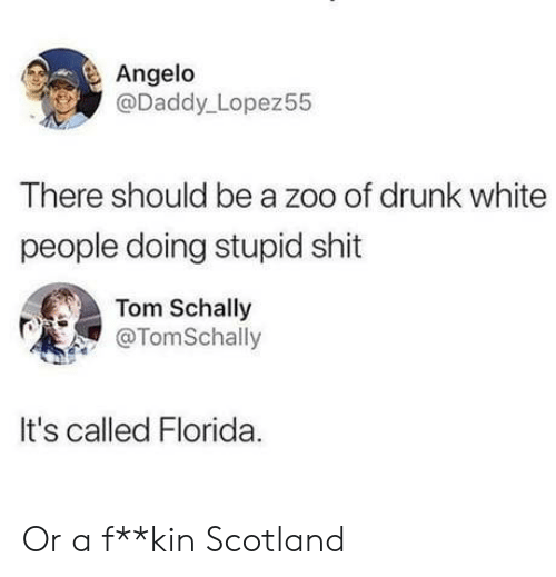 zoo: Angelo  @Daddy Lopez55  There should be a zoo of drunk white  people doing stupid shit  Tom Schally  @TomSchally  It's called Florida Or a f**kin Scotland