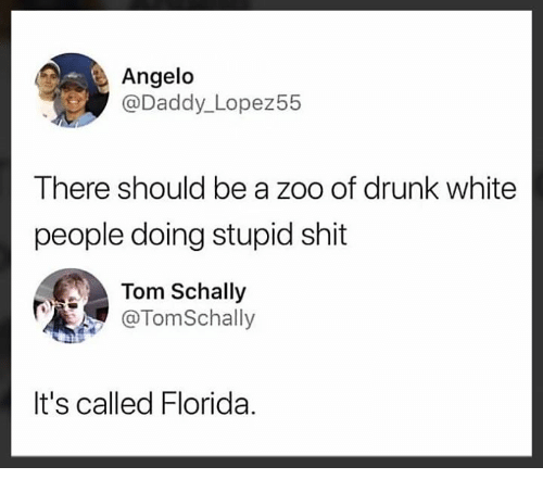 angelo: Angelo  @Daddy_Lopez55  There should be a zoo of drunk white  people doing stupid shit  Tom Schally  @TomSchally  It's called Florida.
