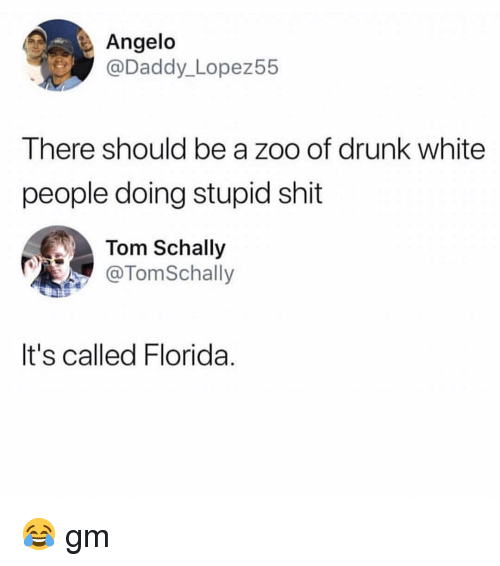 angelo: Angelo  @Daddy_Lopez55  There should be a zoo of drunk white  people doing stupid shit  Tom Schally  @TomSchally  It's called Florida. 😂 gm