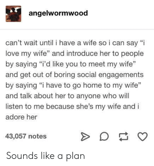"adore: angelwormwood  can't wait until i have a wife soi can say ""i  love my wife"" and introduce her to people  by saying ""i'd like you to meet my wife""  and get out of boring social engagements  by saying ""i have to go home to my wife""  and talk about her to anyone who will  listen to me because she's my wife and i  adore her  43,057 notes  A Sounds like a plan"