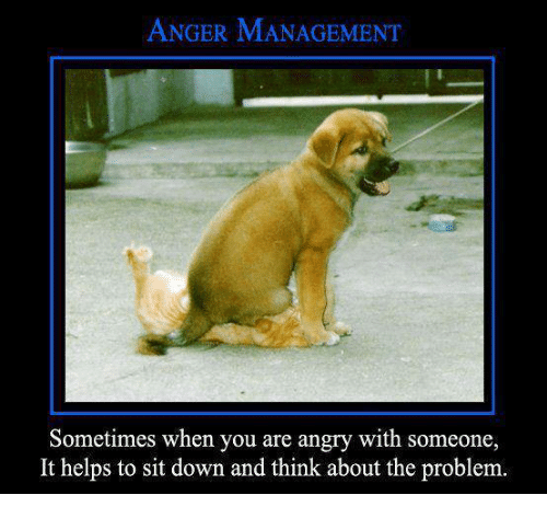 Anger Problems Quotes And Pictures: 25+ Best Memes About Anger Management