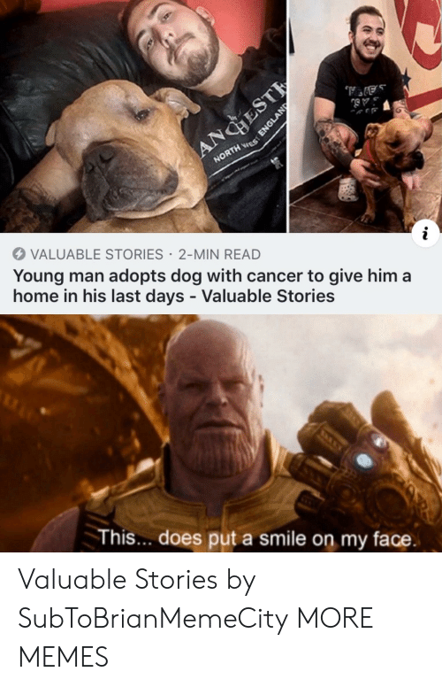 Cancer: ANGHEST  NORTH ES  VALUABLE STORIES 2-MIN READ  Young man adopts dog with cancer to give him a  home in his last days - Valuable Stories  This... does put a smile on my face.  ENGLAND Valuable Stories by SubToBrianMemeCity MORE MEMES