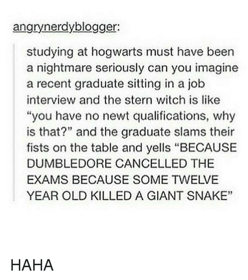 "Dumbledore, Job Interview, and Memes: angrynerdyblogger:  studying at hogwarts must have been  a nightmare seriously can you imagine  a recent graduate sitting in a job  interview and the stern witch is like  ""you have no newt qualifications, why  is that?"" and the graduate slams their  fists on the table and yells ""BECAUSE  DUMBLEDORE CANCELLED THE  EXAMS BECAUSE SOME TWELVE  YEAR OLD KILLED A GIANT SNAKE"" HAHA"