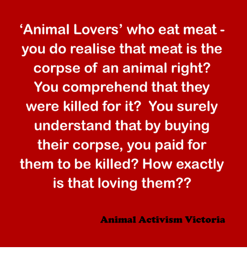 animal lover: 'Animal Lovers' who eat meat  you do realise that meat is the  corpse of an animal right?  You comprehend that they  were killed for it? You surely  understand that by buying  their corpse, you paid for  them to be killed? How exactly  is that loving them??  Animal Activism Victoria