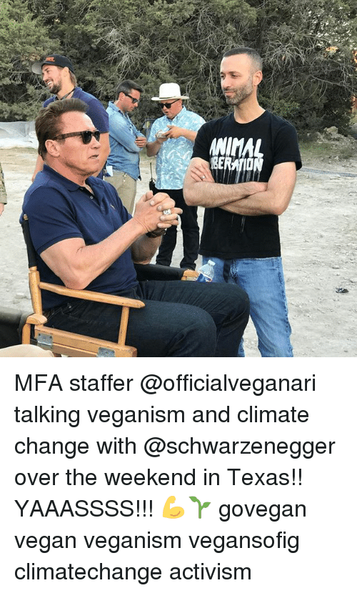 Climatechange: ANIMAL MFA staffer @officialveganari talking veganism and climate change with @schwarzenegger over the weekend in Texas!! YAAASSSS!!! 💪🌱 govegan vegan veganism vegansofig climatechange activism