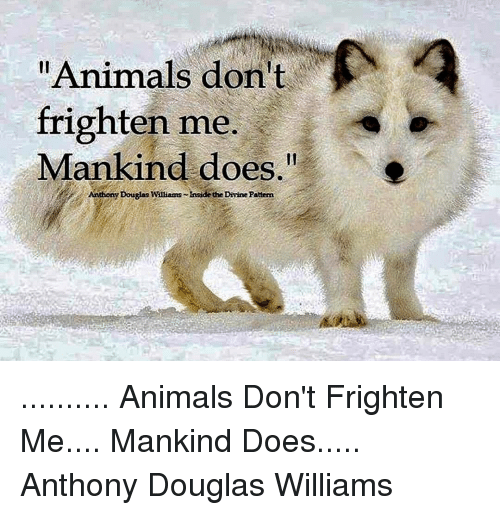 """Memes, Frightening, and 🤖: Animals don't  frighten me.  Mankind does.""""  Anthony Douglas Williams Inside the Divine Pattern .......... Animals Don't Frighten Me.... Mankind Does..... Anthony Douglas Williams"""