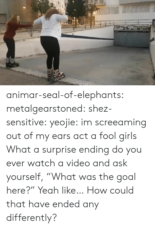"""Elephants: animar-seal-of-elephants: metalgearstoned:  shez-sensitive:  yeojie: im screeaming out of my ears act a fool girls   What a surprise ending   do you ever watch a video and ask yourself, """"What was the goal here?""""   Yeah like… How could that have ended any differently?"""