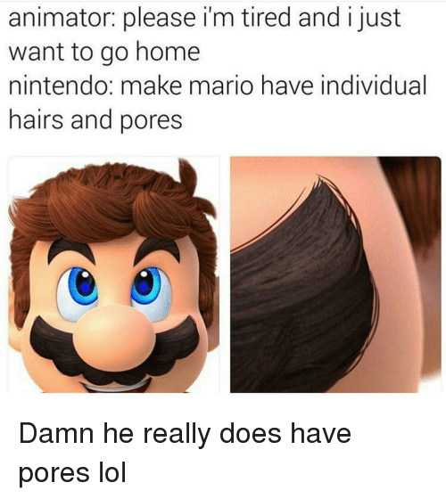 Memes, Nintendo, and Mario: animator: please i m tired and just  want to go home  nintendo: make mario have individual  hairs and pores Damn he really does have pores lol
