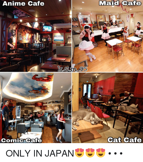 Only In Japan: Anime Cafe  Comic Ocafe  Maid Cafe  Cat Cafe ONLY IN JAPAN😍😍😍 • • •