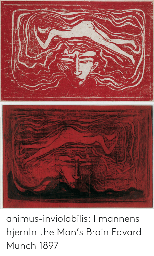 the man: animus-inviolabilis:  I mannens hjernIn the Man's Brain Edvard Munch 1897