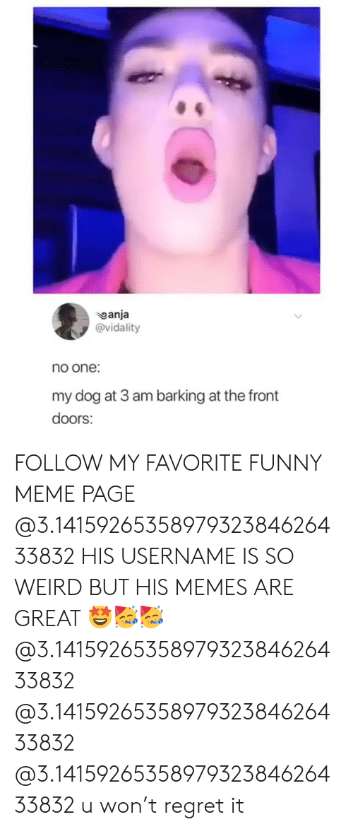 Girl Memes: anja  @vidality  no one:  my dog at 3 am barking at the front  doors: FOLLOW MY FAVORITE FUNNY MEME PAGE @3.1415926535897932384626433832 HIS USERNAME IS SO WEIRD BUT HIS MEMES ARE GREAT 🤩🥳🥳 @3.1415926535897932384626433832 @3.1415926535897932384626433832 @3.1415926535897932384626433832 u won't regret it