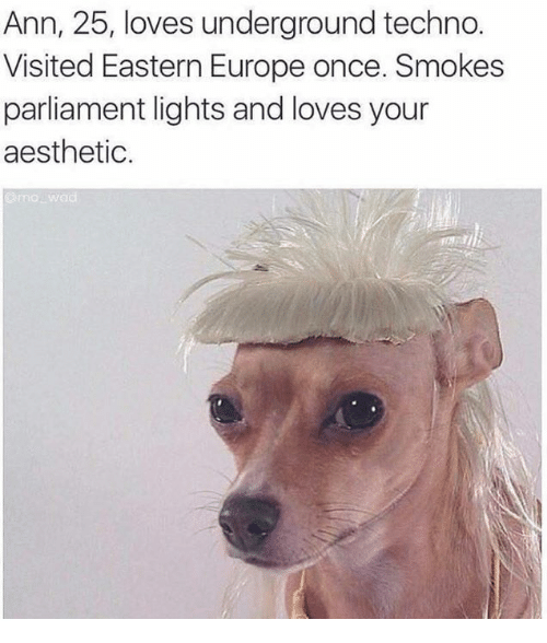Dank Memes: Ann, 25, loves underground techno  Visited Eastern Europe once. Smokes  parliament lights and loves your  aesthetic.