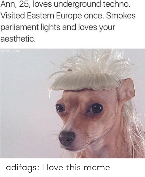 techno: Ann, 25, loves underground techno.  Visited Eastern Europe once. Smokes  parliament lights and loves your  aesthetic. adifags:  I love this meme