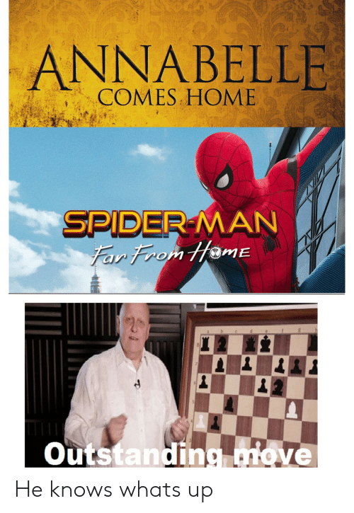 annabelle: ANNABELLE I  COMES HOME  SPIDER-MAN  Far From HamE  Outstanding move He knows whats up