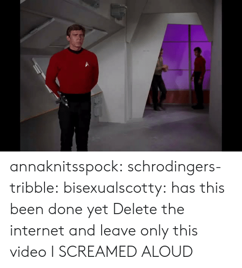Done Yet: annaknitsspock: schrodingers-tribble:  bisexualscotty:  has this been done yet  Delete the internet and leave only this video  I SCREAMED ALOUD