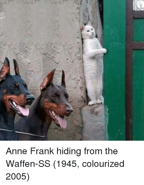 Colourized: Anne Frank hiding from the Waffen-SS (1945, colourized 2005)