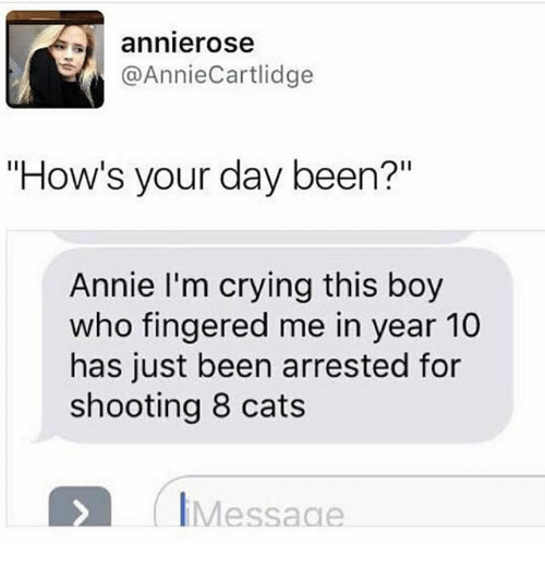 "Hows Your Day: annierose  @AnnieCartlidge  ""How's your day been?""  Annie I'm crying this boy  who fingered me in year 10  has just been arrested for  shooting 8 cats  IMessage"