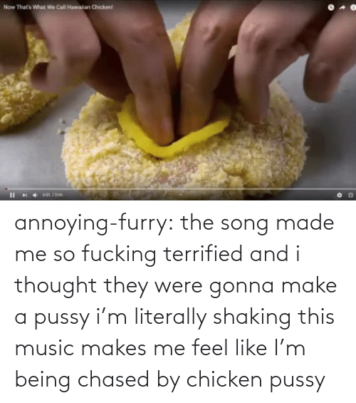 Annoying: annoying-furry: the song made me so fucking terrified and i thought they were gonna make a pussy i'm literally shaking this music makes me feel like I'm being chased by chicken pussy