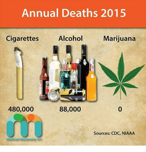 alcohol vs marijuana comparative essay Marijuana vs alcohol fact marijuana is far less addictive than alcohol although alcohol and marijuana are both harmful if used marijuana vs alcohol essay.