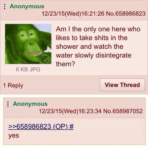 Dank Memes: Anonymous  12/23/15 (Wed) 16:21:26 No.658986823  Am the only one here who  likes to take shits in the  shower and watch the  water slowly disintegrate  them?  6 KB JPG  1 Reply  View Thread  Anonymous  12/23/15 (Wed) 16:23:34 No. 658987052  658986823 (OP)  yes