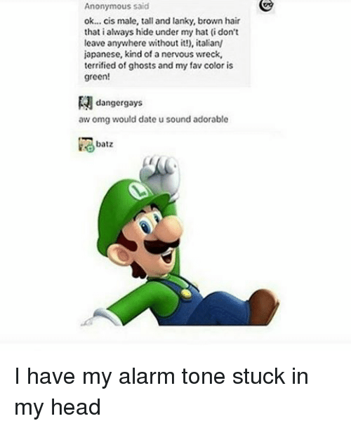 Memes, Alarm, and Alarming: Anonymous said  ok... cis male, tall and lanky, brown hair  that i always hide under my hat (i don't  leave anywhere without it!), italian/  japanese, kind of a nervous wreck,  terrified of ghosts and my fav color is  green!  danger gays  aw omg would date u sound adorable  batz I have my alarm tone stuck in my head