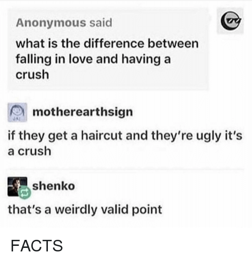 Valid Point: Anonymous said  what is the difference between  falling in love and having a  crush  motherearthsign  if they get a haircut and they're ugly it's  a crush  shenko  that's a weirdly valid point FACTS