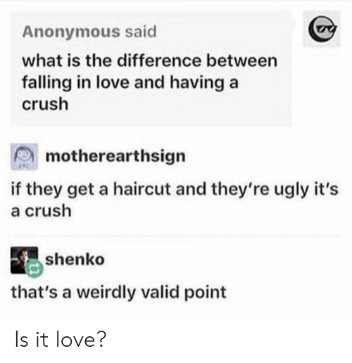Valid Point: Anonymous said  what is the difference between  falling in love and having a  crush  motherearthsign  if they get a haircut and they're ugly it's  a crush  shenko  that's a weirdly valid point Is it love?